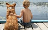 Astma en huisdierenallergie