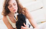 Zylkène voor hond en kat